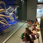 museo ciencias 10