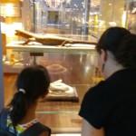 museo ciencias 16