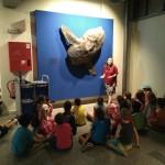 museo ciencias 3