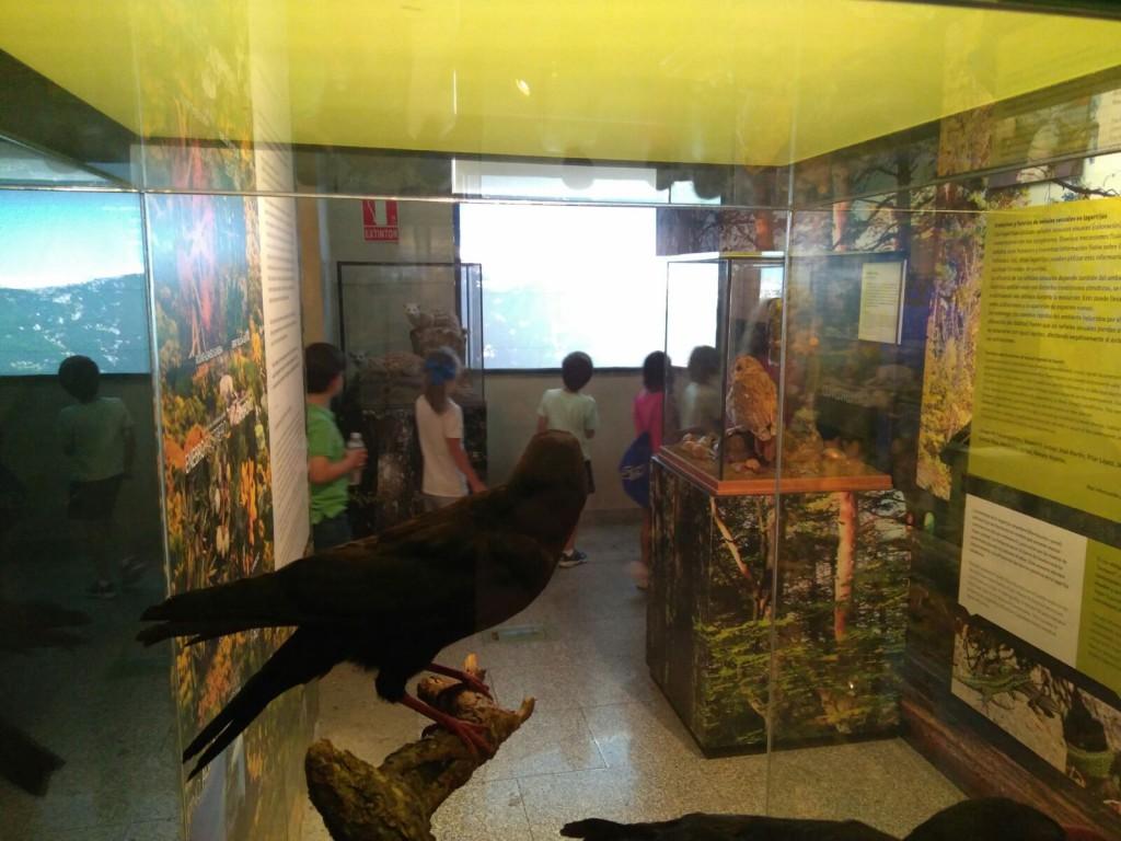 museo ciencias 4