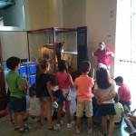 museo ciencias 5