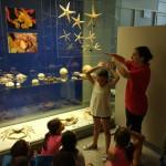 museo ciencias 7