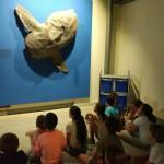museo ciencias 9